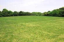 新緑 新緑の芝生広場 新緑の草原 芝生広場 草原