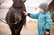 Cute Kid boy in turquoise overalls stroking an Icelandic pony with a funny forelock. Child thanks the horse after hippotherapy. Brown pony looking at the camera