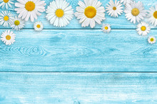 White Daisy Flowers On Blue Wooden Table Background. Beautiful Spring Composition, Template For Design, With Copy Space For Text.