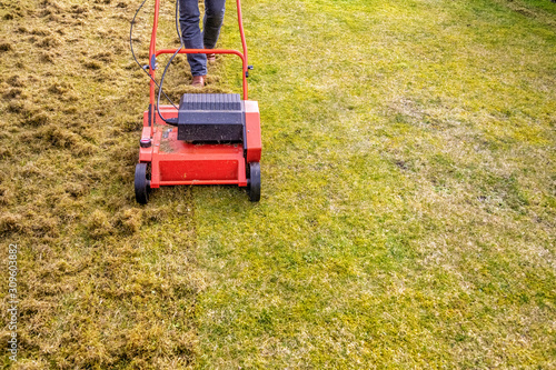 Photo Dethatching the Lawn with an Electric Dethatcher