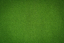 Fresh Green Grass Background Turf Top View