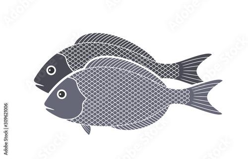 Fototapeta  Dorado Fish logo. Isolated Dorado Fish on white background
