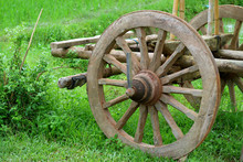 The Wooden Wheel Of An Old Bullock Cart In The Green Field