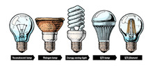 Evolution Set Of Light Bulb