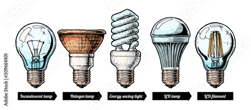 Obraz evolution set of light bulb - fototapety do salonu