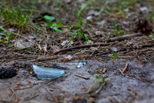 Environmental Ecology Concept, Trash In The Forest, A Splinter Of A Bottleneck From A Glass Bottle Lies In The Ground And Grass. Blur Background