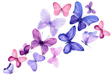 Swarm Of Pink And Purple Butterflies On An Isolated White Background, Watercolor Painting