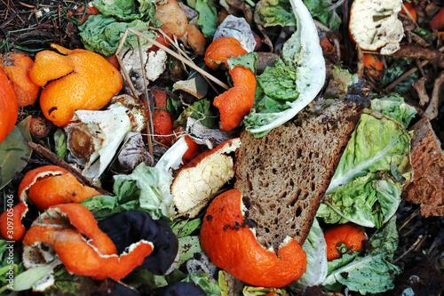 Photo Weggeworfene und verdorbene Lebensmittel auf einem Abfallhaufen