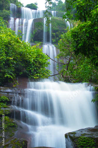 waterfall in forest - 309705632
