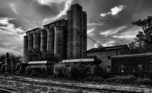 Spooky Black And White Photo Of Grain Elevator And Railroad With Flock Of Black Birds.