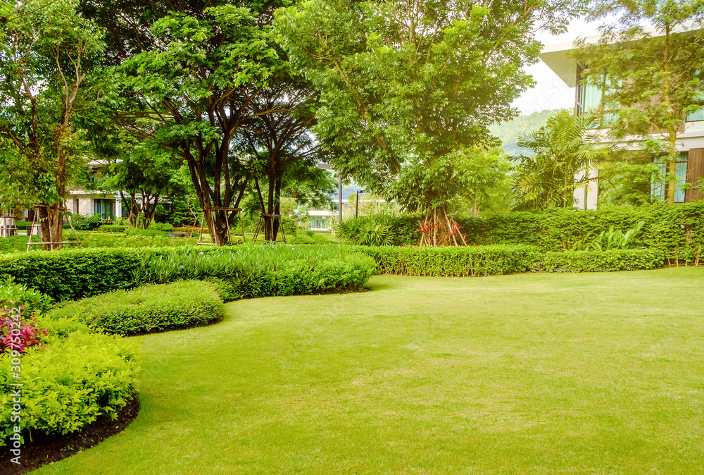 Fototapeta House in the park, Green lawn, front yard is beautifully designed garden, Flowers in the garden, Green grass, Modern house with beautiful landscaped front yard, Lawn and garden blur background.