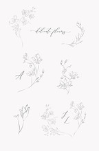 Collection Of Delicate Line Drawing Vector Floral Wreaths Frames. Hand Drawn Delicate Flowers, Branches, Leaves, Blossom. Botanical Illustration. Leaf Logo