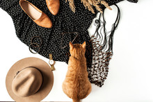 Flat Lay Fashion Collage. Women Modern Clothes, Accessories, Cute Ginger Kitten, Reeds. Shoes, Dress With Polka Dot, Watch, Hat, Bracelet, Sunglasses. Blog, Social Media, Magazine Concept. Top View.