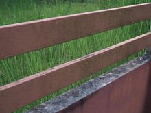 Wooden Privacy Fence In Backyard With Peeling Paint And Stain And Green Algae. Brown Fence Made Of Wooden Planks And Bricks In The Green Grass.