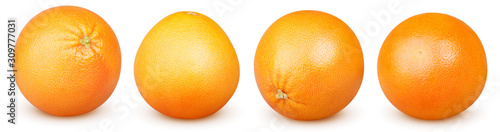 Isolated grapefruits. Collection of whole grapefruits (oranges) isolated on white background with clipping path - 309777031