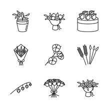 Flower, And Dried Flowers Line Icon Set. Physalis Peruviana Flowerpot, Lavender, Cotton Branch, Rye, Bunny Tail, Fruit Bouquet, Roses. For Floristic Shope Web Design And Printed Materials