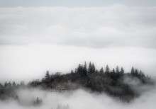 Surreal Foggy Day In The Orego...