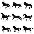 Set of silhouettes free trotting horses