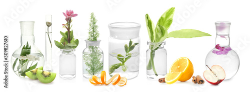 Glass flask with plant on white background - 309827610