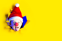 A Boy In A Santa Claus Hat And...