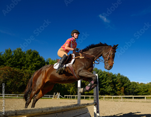 Obraz na plátne Young female rider jumping an oxer hurdle on a bay thoroughbred gelding horse in