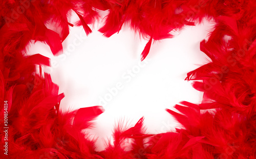 Fotografía  Red feathers. Background of red feathers