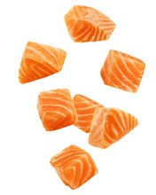 Falling Raw Salmon, Fish Isolated On White Background, Clipping Path, Full Depth Of Field
