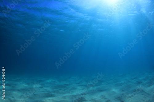 Fototapeta Underwater ocean background  obraz