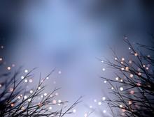 Golden Sparkles On Grass. Dark...