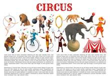 Circus Entertainment Show Anim...