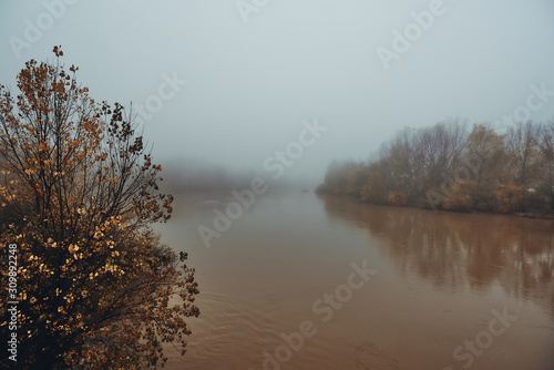 misty and melancholic morning on the river at winter Canvas Print