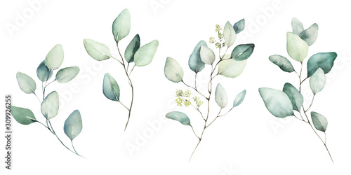 Fototapety, obrazy: Watercolor floral illustration set - green leaf branches collection, for wedding stationary, greetings, wallpapers, fashion, background. Eucalyptus, olive, green leaves, etc.