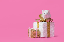 Symbol Of New Year 2020 - White Or Metal (silver) Rat Mouse.Living Mouse Rat Sits On A Gift Box On A Pink Background