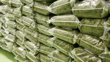 Dry Cannabis In A Plastic Bags Ready For Transportation