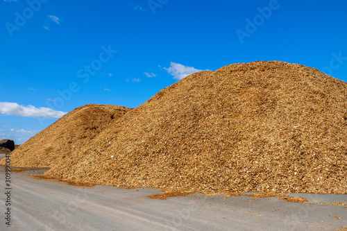 Vászonkép  Woodchips piles on a storage site