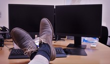 Lazy Day At The Office