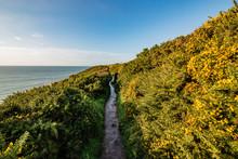 The Ballycotton Cliff Walk Hike In Cork, Ireland