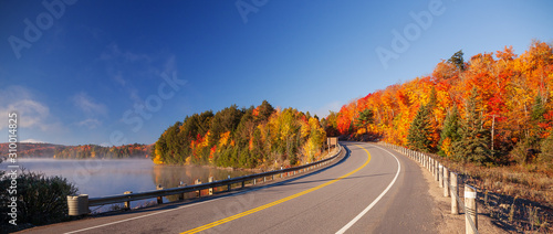 Photo road in autumn