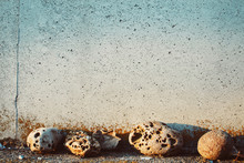 Textured Rocks Background Against Wall