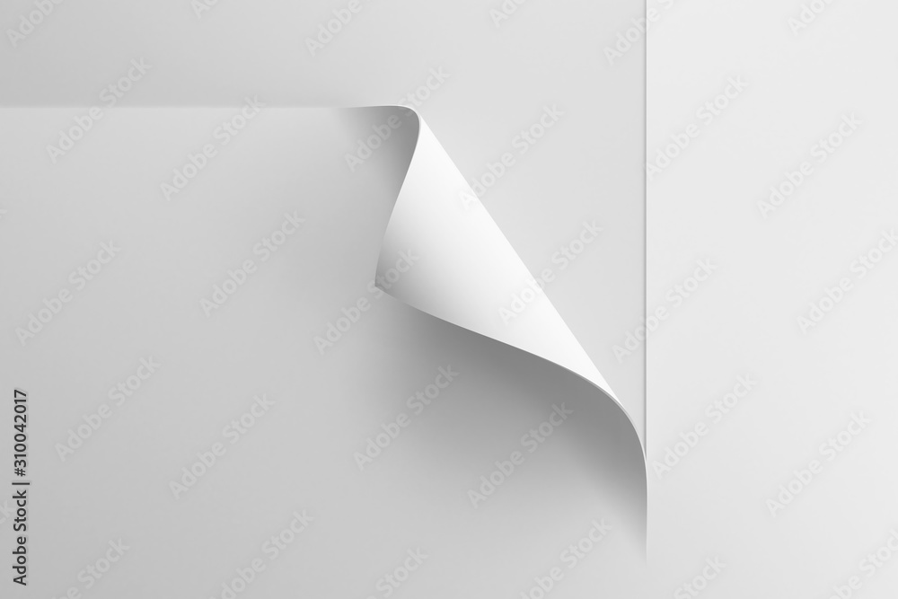 Fototapeta paper with the curled corner, 3d rendering