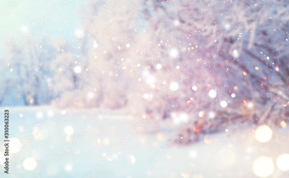 Fototapeta Christmas winter blurred background. Xmas tree with snow, holiday festive background. Widescreen backdrop. New year Winter art design with snowflakes. Nature scene