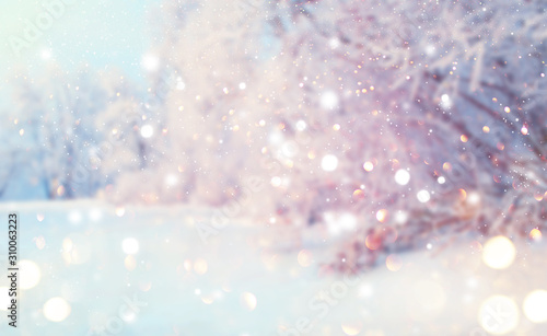 fototapeta na lodówkę Christmas winter blurred background. Xmas tree with snow, holiday festive background. Widescreen backdrop. New year Winter art design with snowflakes. Nature scene