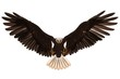 Bald eagle flying isolated on white 3d illustration