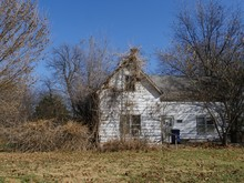 Abandoned House Surrounded By ...