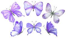 Set Of Watercolor Purple Butterflies.
