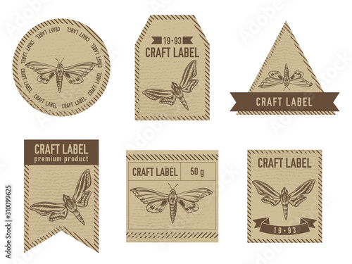 Craft labels vintage design with illustration of ambulyx pryeri, theretra oldenl Canvas Print