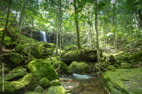 Photo waterfall in green forest