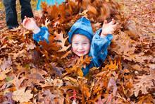 A Happy Litle Girl Enjoying An Autumn Pile Of Raked Leaves Outside