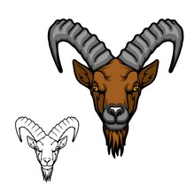Mountain Goat Or Ibex Animal V...