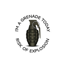 Realistic Hand Grenade 3d With Slogan Text Apparel Print Emblem Design For Teens, Military Metaphor